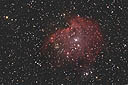 NGC2175 with an ASA N8 20cm f2.75 astrograph and modified Canon 350D